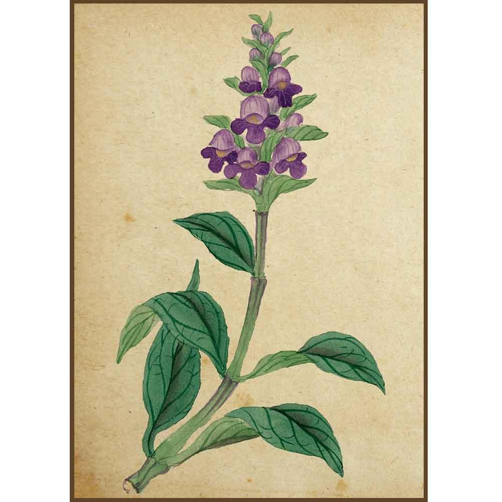 Quadro decorativo Flores em canvas - AGFL026