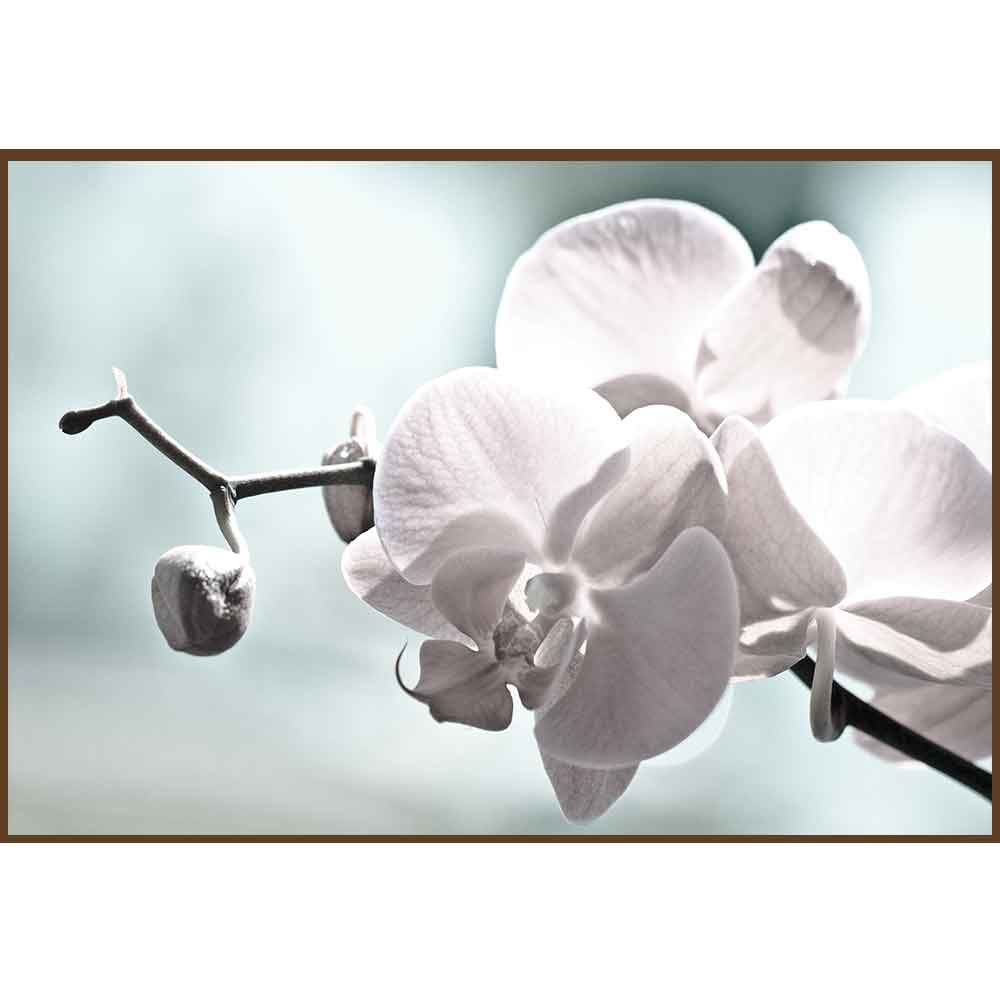 Quadro decorativo Flores em canvas - AGFL077