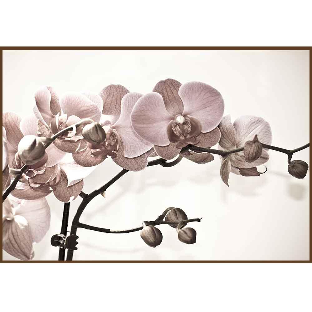 Quadro decorativo Flores em canvas - AGFL078