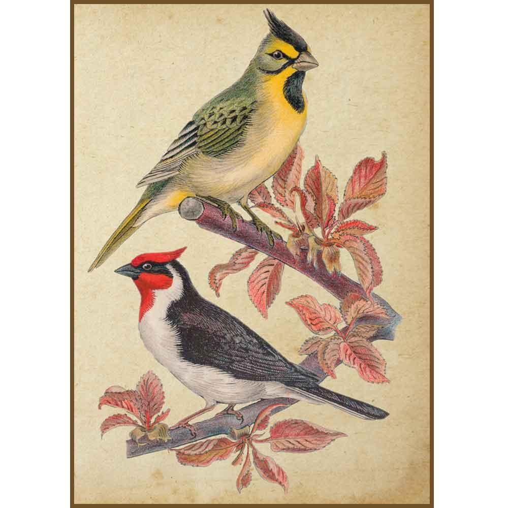 Quadro decorativo pássaro em canvas - AGPS001
