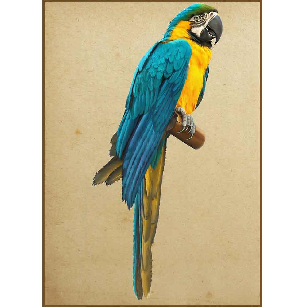 Quadro decorativo pássaro em canvas - AGPS004