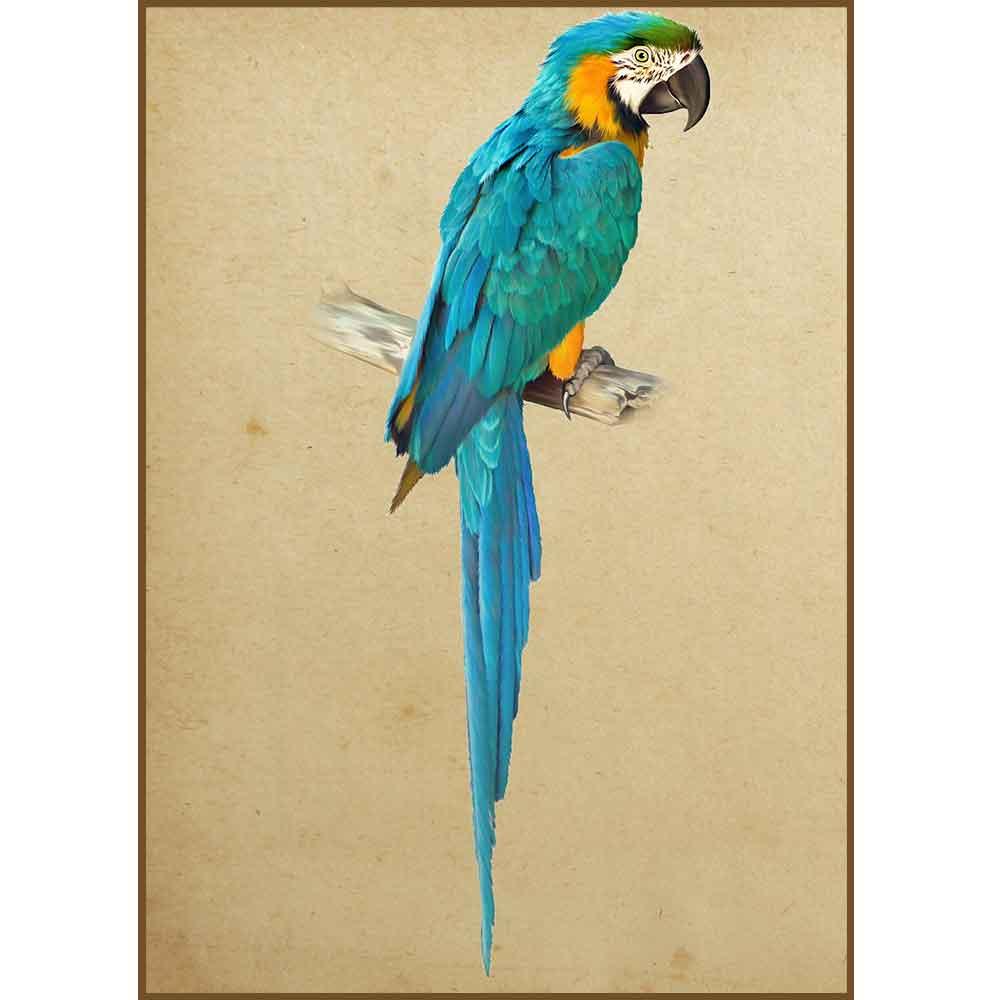 Quadro decorativo pássaro em canvas - AGPS006