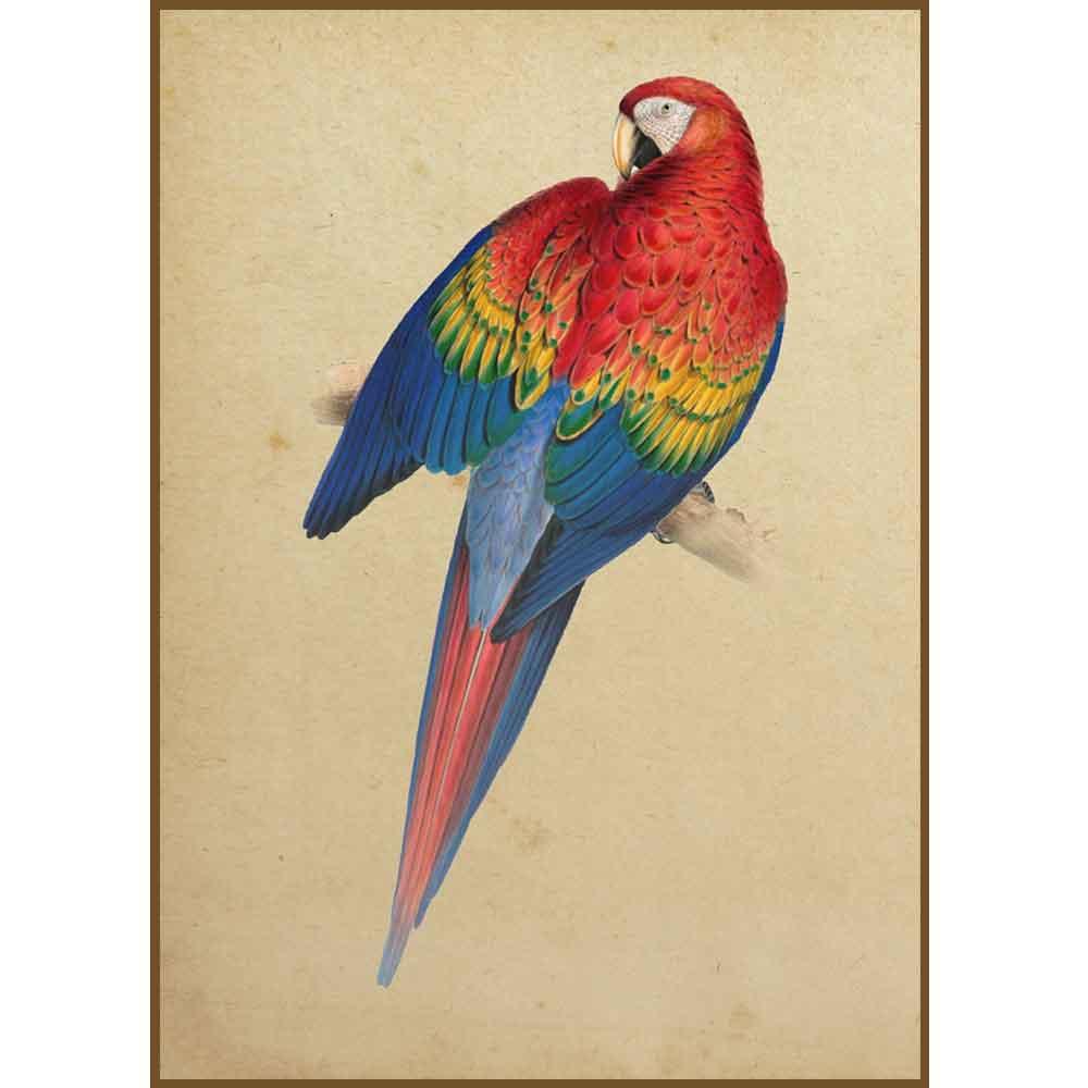 Quadro decorativo pássaro em canvas - AGPS008