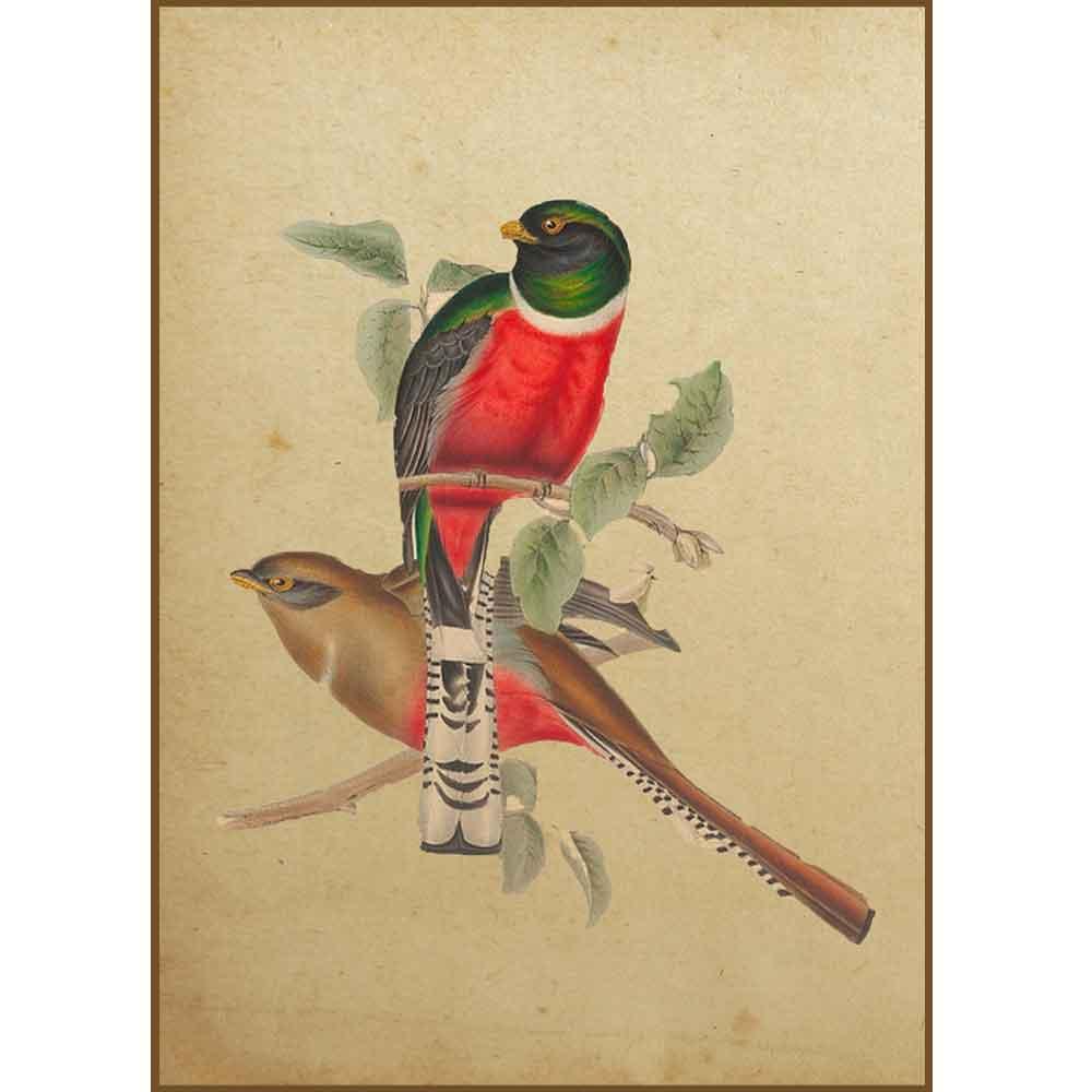 Quadro decorativo pássaro em canvas - AGPS010