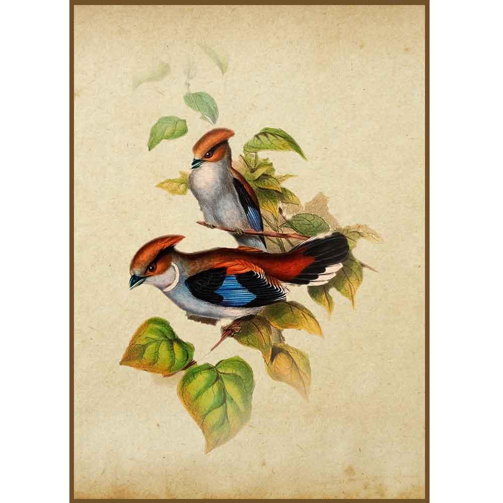 Quadro decorativo pássaro em canvas - AGPS018
