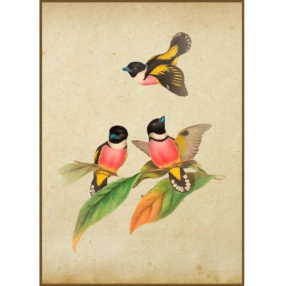Quadro decorativo pássaro em canvas - AGPS019