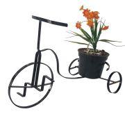 Mini Bicicleta Cachepot Decorativa G