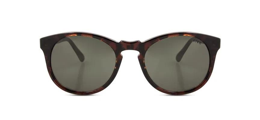 Livo Eyewear Miles Solar Demi Clássico