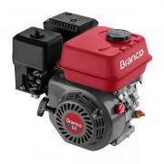 Motor Estacionário B4T-5.5H Branco 5,5cv Com Alerta de Oleo - 90500262