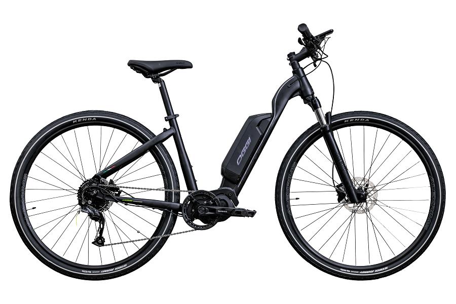 Bicicleta OGGI Flex 700