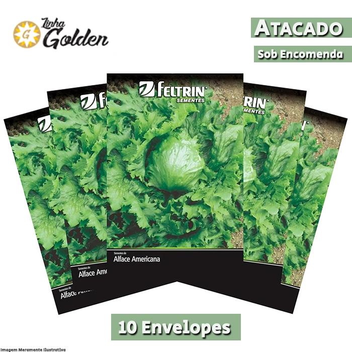10 Envelopes - Sementes de Alface Americana Grandes Lagos - Atacado - Feltrin - Linha Golden