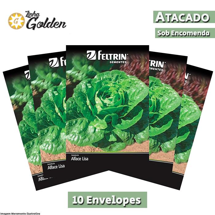 10 Envelopes - Sementes de Alface Elisabeth - Atacado - Feltrin - Linha Golden
