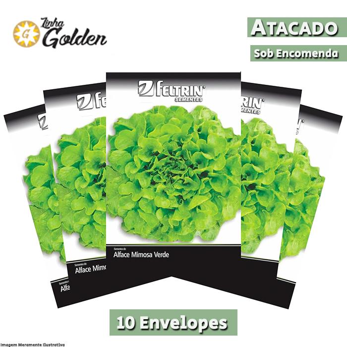 10 Envelopes - Sementes de Alface Giovana - Atacado - Feltrin - Linha Golden