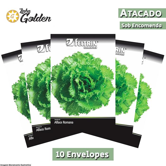 10 Envelopes - Sementes de Alface Romanela - Atacado - Feltrin - Linha Golden