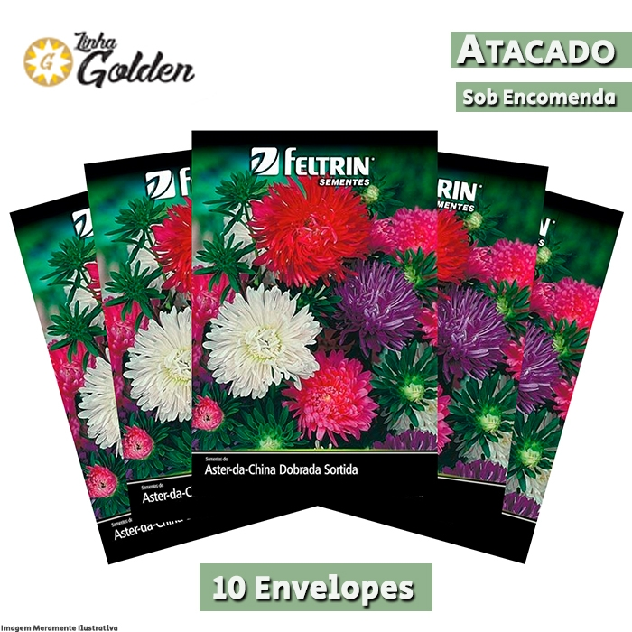 10 Envelopes - Sementes de Aster-Da-China Dobrada Sortida - Atacado - Feltrin - Linha Golden