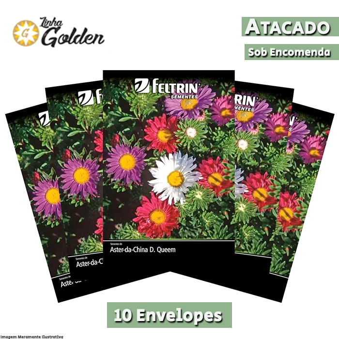 10 Envelopes - Sementes de Aster-da-China Singela Sortida - Atacado - Feltrin - Linha Golden