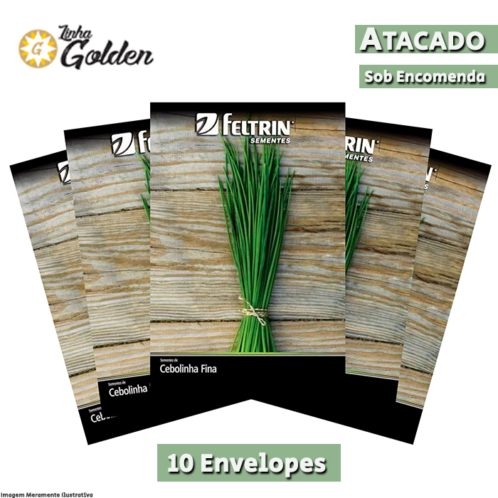 10 Envelopes - Sementes de Cebolinha Verde Fina - Atacado - Feltrin - Linha Golden