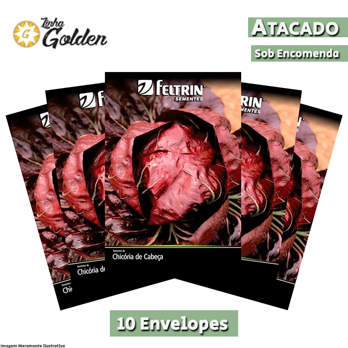 10 Envelopes - Sementes de Chicória Di Peppe - Atacado - Feltrin - Linha Golden