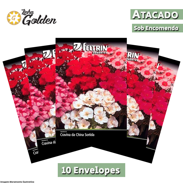 10 Envelopes - Sementes de Cravina Da China Singela Sortida - Atacado - Feltrin - Linha Golden