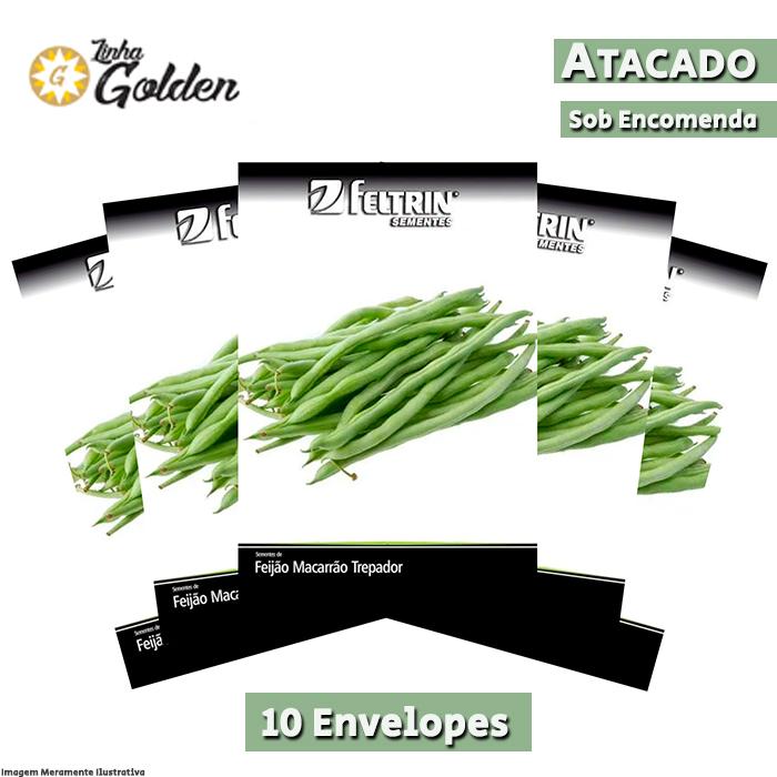 10 Envelopes - Sementes de Feijão Tempesta - Atacado - Feltrin - Linha Golden