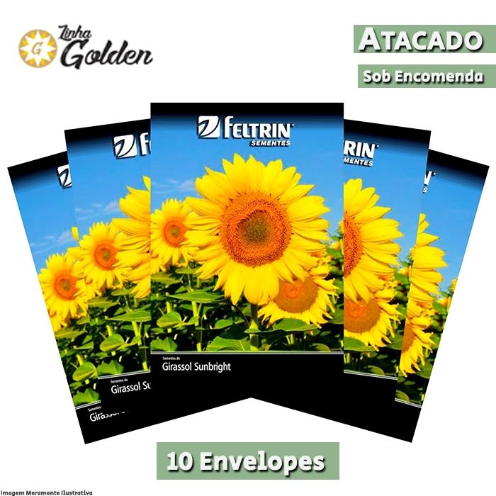 10 Envelopes - Sementes de Girassol Sunbright - Atacado - Feltrin - Linha Golden