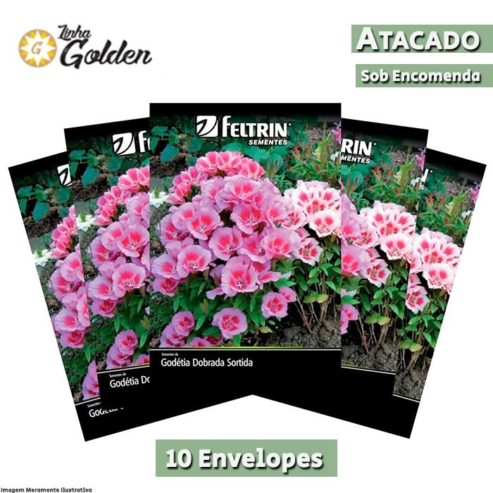 10  Envelopes - Sementes de Godétia Dobrada Sortida  - Atacado - Feltrin - Linha Golden