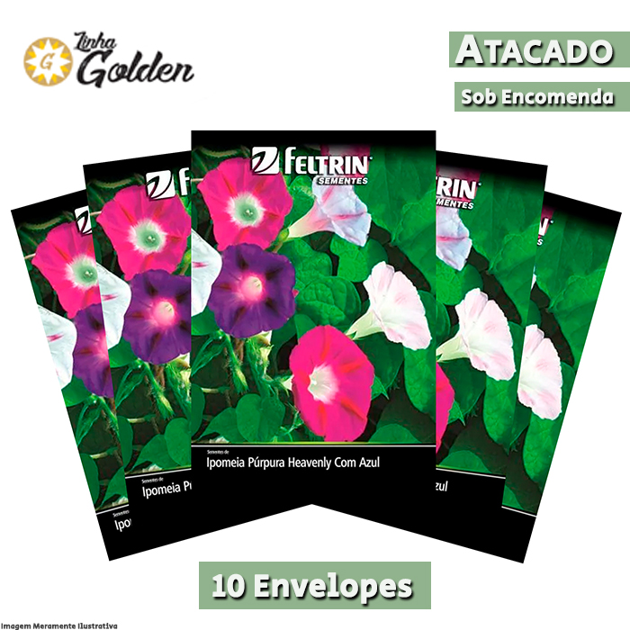10 Envelopes - Sementes de Ipoméia Púrpura Sortida - Feltrin