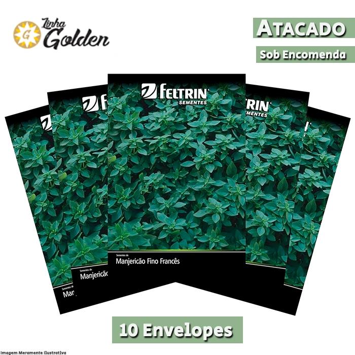 10 Envelopes - Sementes de Manjericão Verde Fino Francês - Atacado - Feltrin - Linha Golden