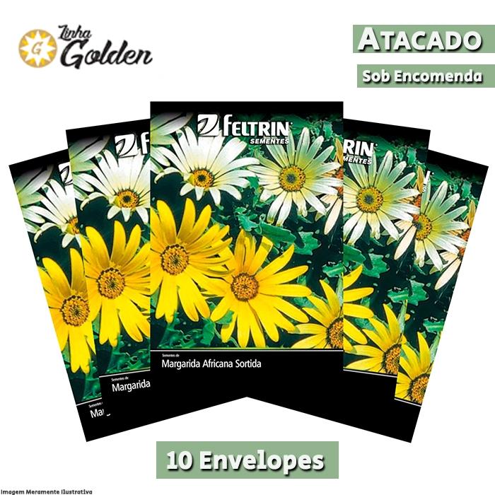 10 Envelopes - Sementes de Margarida Africana Sortida Dimorphoteca - Atacado - Feltrin - Linha Golden