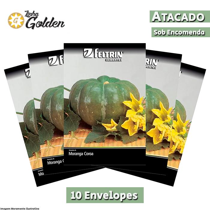 10 Envelopes - Sementes de Moranga Coroa - Atacado - Feltrin - Linha Golden