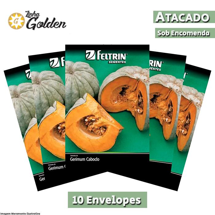 10 Envelopes - Sementes de Moranga Exposição - Atacado - Feltrin - Linha Golden