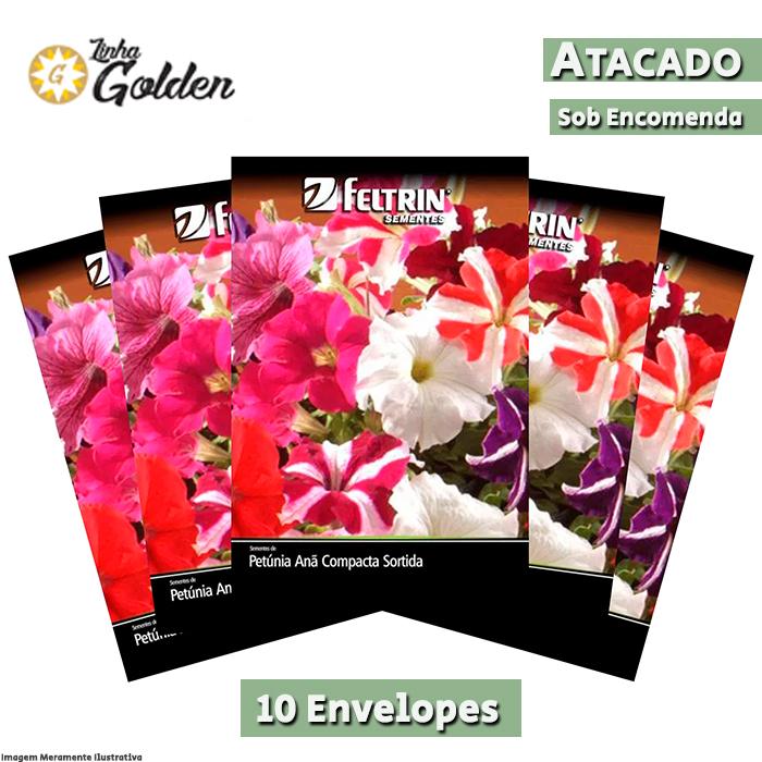 10 Envelopes - Sementes de Petúnia Anã Compacta Sortida - Atacado - Feltrin - Linha Golden