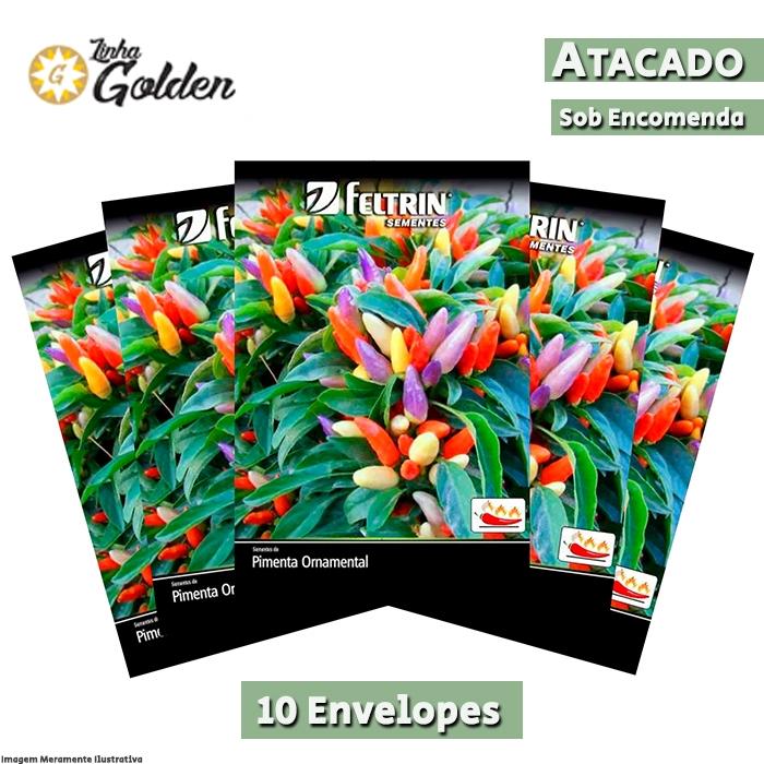10 Envelopes - Sementes de Pimenta Floribela - Atacado - Feltrin - Linha Golden