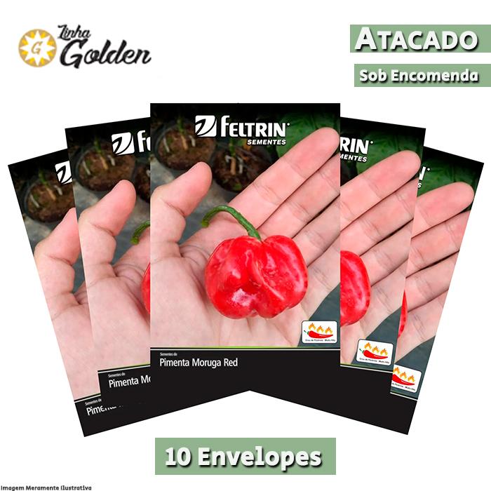 10 Envelopes - Sementes de Pimenta Moruga Red - Atacado - Feltrin - Linha Golden