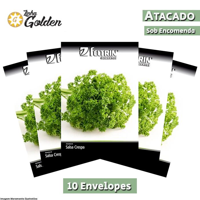 10 Envelopes - Sementes de Salsa Crespa Extra - Atacado - Feltrin - Linha Golden