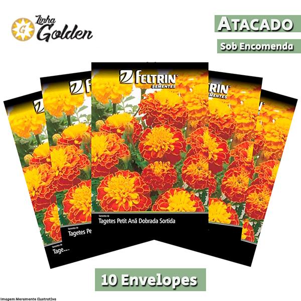 10 Envelopes - Sementes de Tagetes Petit - Anã Dobrada Sortida - Atacado - Feltrin - Linha Golden