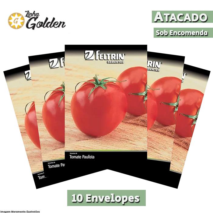 10 Envelopes - Sementes de Tomate Santa Clara - Atacado - Feltrin - Linha Golden