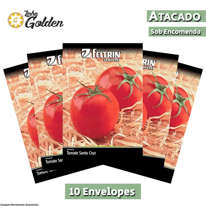 10 Envelopes - Sementes de Tomate Santa Cruz - Atacado - Feltrin - Linha Golden