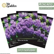 10 Envelopes - Sementes de Agerato Anão Terra Blue - Atacado - Feltrin - Linha Golden