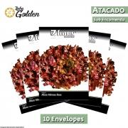 10 Envelopes - Sementes de Alface Betânia - Atacado - Feltrin - Linha Golden