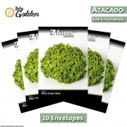 10 Envelopes - Sementes de Alface Cinderela  - Atacado - Feltrin - Linha Golden