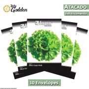 10 Envelopes - Sementes de Alface Crocantela - Atacado - Feltrin - Linha Golden