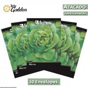 10 Envelopes - Sementes de Alface Regina - Atacado - Feltrin - Linha Golden