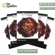 10 Envelopes - Sementes de Alface Rubinela - Atacado - Feltrin - Linha Golden