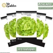 10 Envelopes - Sementes de Alface Stella  - Atacado - Feltrin - Linha Golden