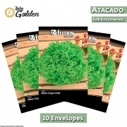10 Envelopes - Sementes de Alface Veneranda - Atacado - Feltrin - Linha Golden