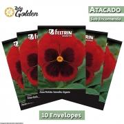10 envelopes - Sementes de Amor-Perfeito Vermelho Gigante Suíço - Atacado - Feltrin - Linha Golden