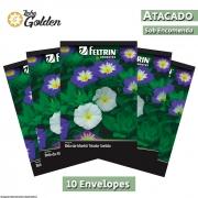 10 envelopes - Sementes de Bela-da-Manhã Tricolor Sortida Convolvulus - Atacado - Feltrin - Linha Golden