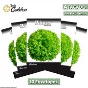 10 Envelopes - Sementes de Alface Brunela - Atacado - Feltrin - Linha Golden
