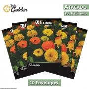 10 Envelopes - Sementes de Calêndula Malta - Atacado - Feltrin - Linha Golden